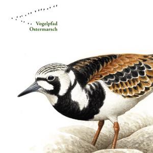 Vogelpfad Ostermarsch – Gestaltung der Infotafeln. Nationalparkverwaltung Niedersächsisches Wattenmeer, 2016