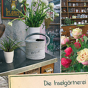 Anzeige und Keyvisual für Blumen Hinrichs Baltrum. 2016